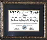 Award of Excellence 2017